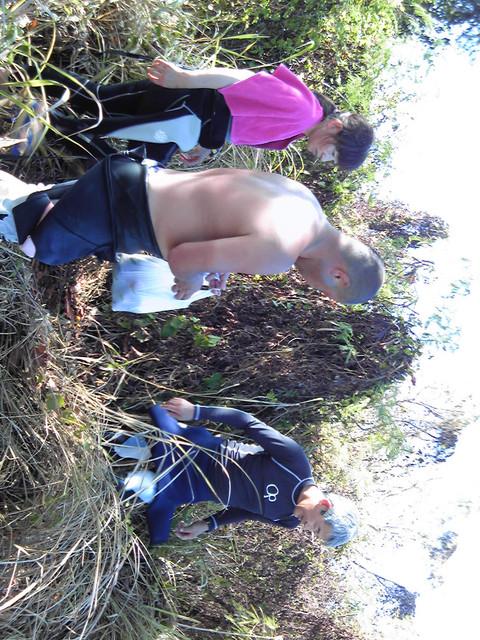 マンゴ狩りツアー