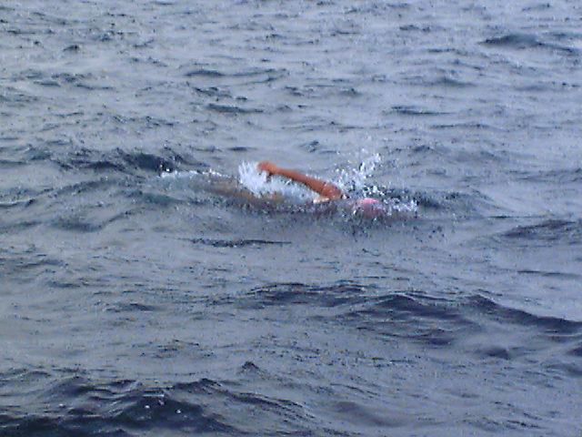 津軽海峡横断泳
